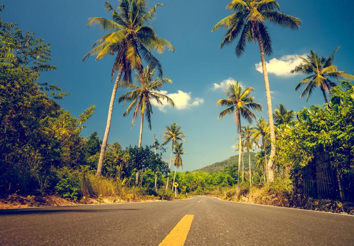 JA Cars, Jamaica Rentals, Cars in Jamaica, Rent in Kingston, Jamaica